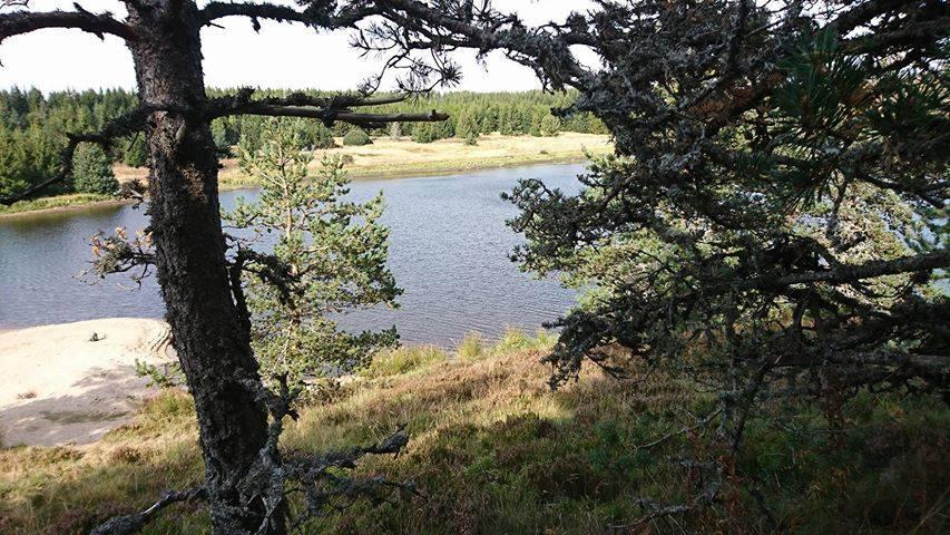 Au lac de Naussac