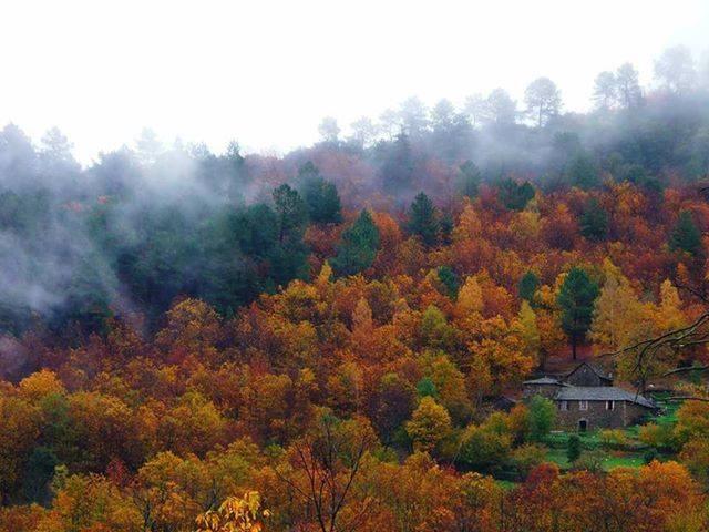 L'automne dans les Cévennes et sa vue sur le village de Gabriac