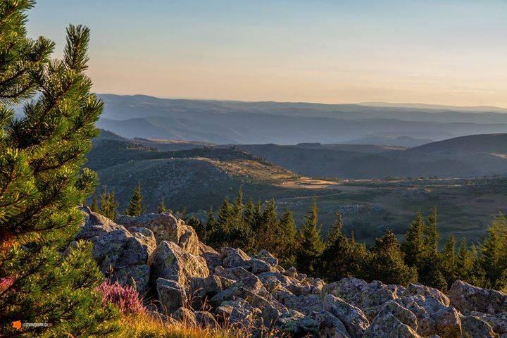 Souvenir d'un bivouac sur le Mont Lozère
